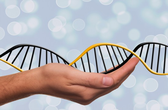 Doszukujesz się praw do spadku po zmarłej osobie? Badania DNA Ci w tym pomogą.